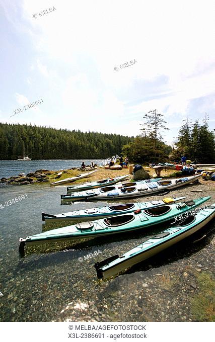 Kayaks in Johnstone strait. Vancouver island. British Columbia. Canada