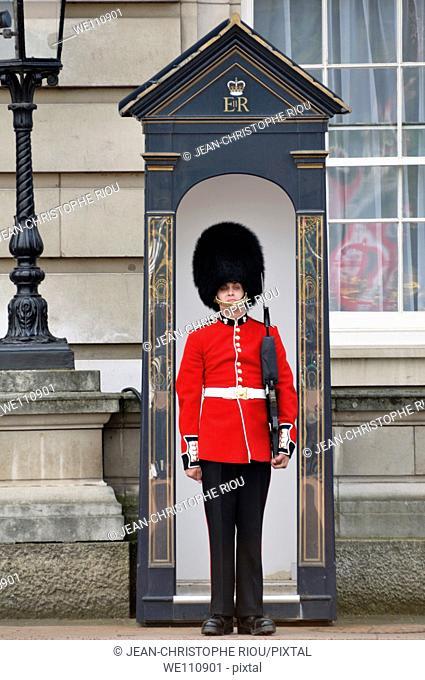 Guard of Buckingham Palace, London, England, UK