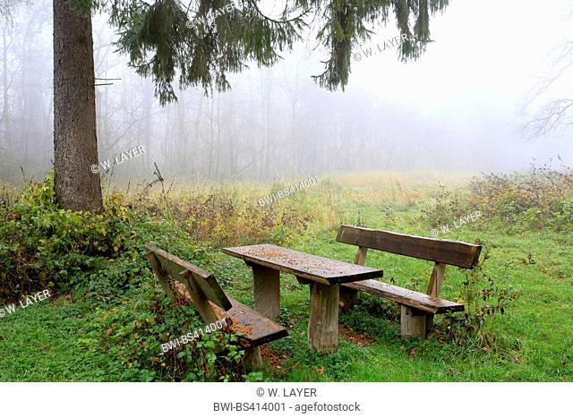 wooden seat group in autumn mist, Germany, Baden-Wuerttemberg