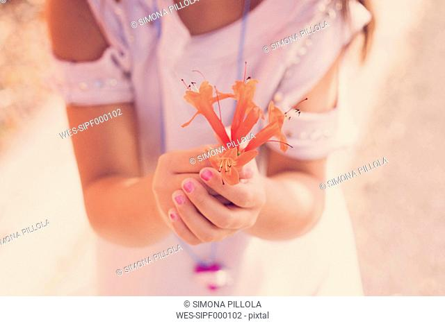 Girl holding orange blossom in her hands, close-up