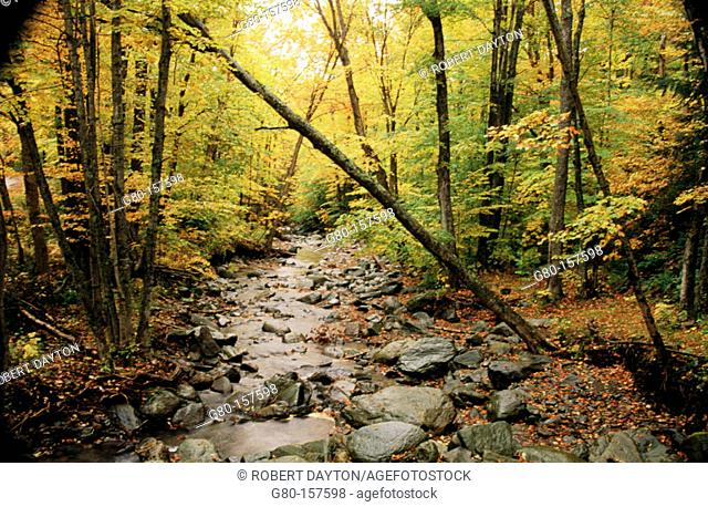 Vermont. USA