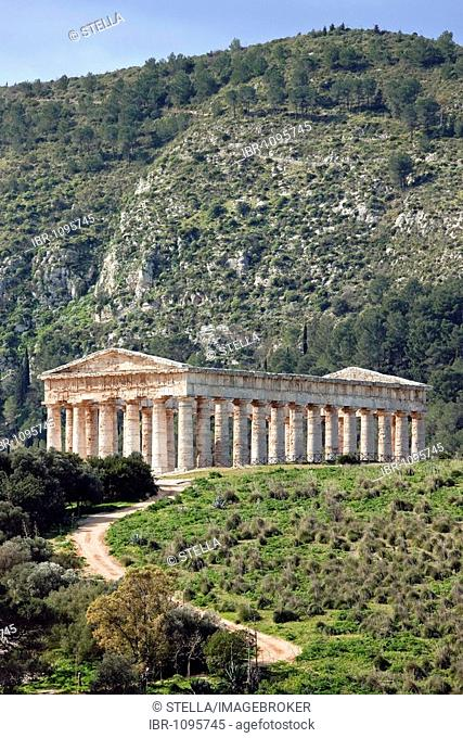Doric Temple of Segesta, general view, Sicily, Italy, Southern Europe