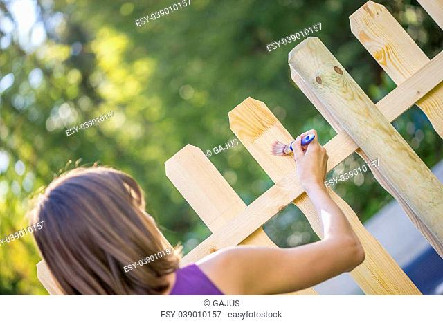 View from the back of a woman varnishing a newly erected wooden fence with a paint brush to protect it from the weather in a DIY concept