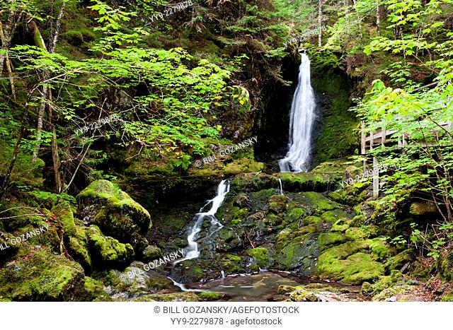 Dickson Falls Trail - Fundy National Park - near Alma, New Brunswick, Canada
