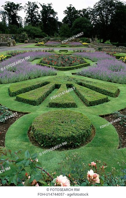 Clipped box and lavender borders in garden at Mellerstain House in the Scottish Borders