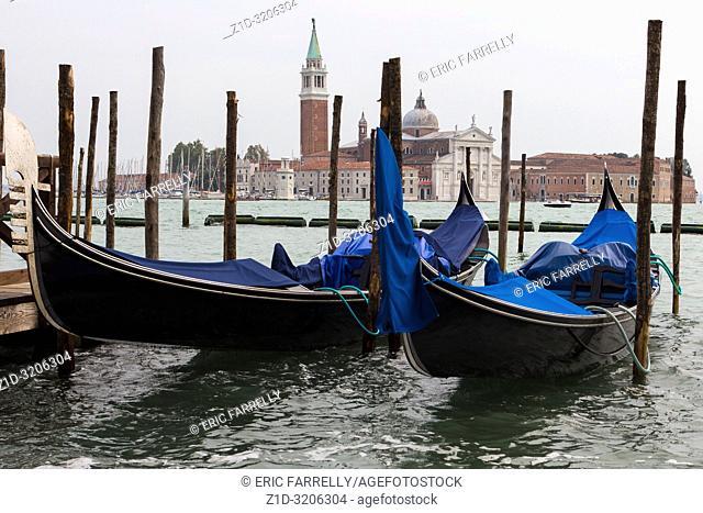 Venice. Rainy weather. Italy. Tied up gondolas