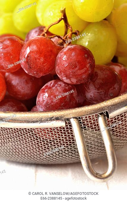 colander with fresh grapes, both green and red, with water droplets