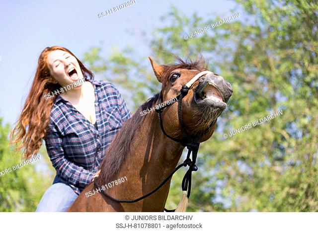 Missouri Fox Trotter. Red-haired young woman on chestnut gelding on a pasture, both of them laughing. Switzerland