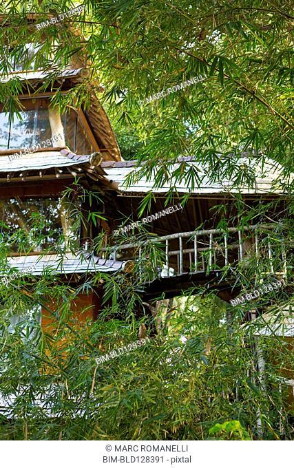 Bamboo treehouse, Ubud, Bali, Indonesia