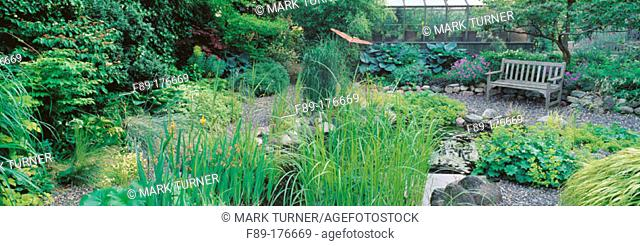 Pond garden among perennials with wooden bench
