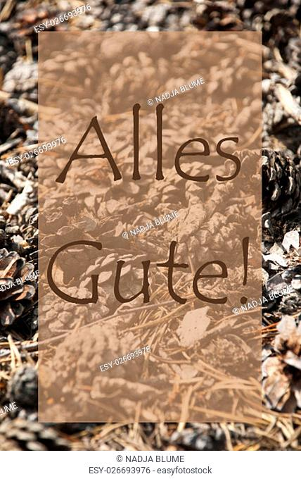 Vertical Texture Of Fir Or Pine Cone. Autumn Season Greeting Card. German Text Alles Gute Means Best Wishes