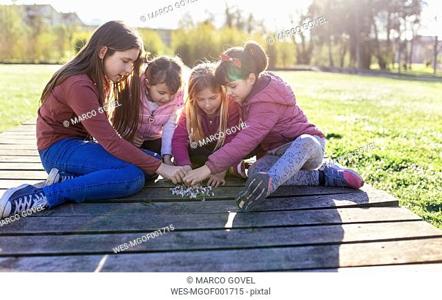 Four girls crouching on a boardwalk with their collected daisies