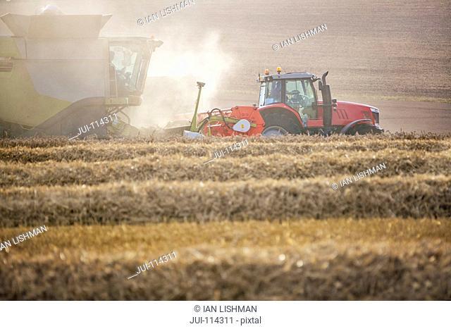 Combine Harvester Harvesting Wheat Crop