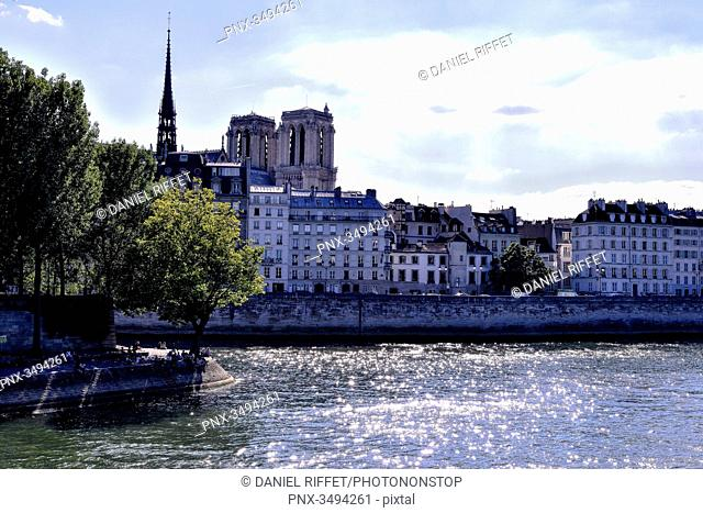 France, Paris, 4th district, banks of the Seine River, view from the bridge Louis-Philippe, Notre-Dame Cathedral