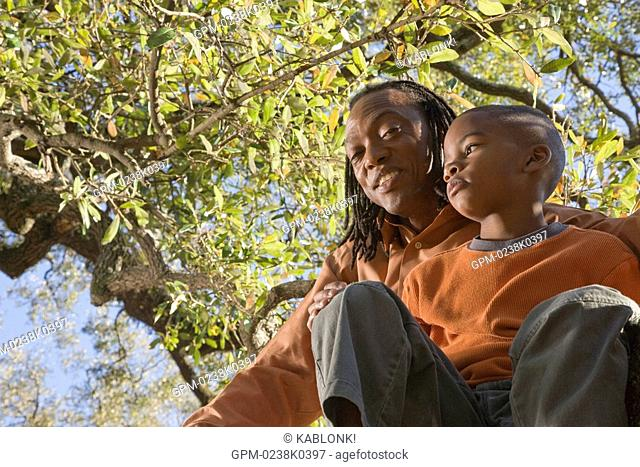 Portrait of African American father and son sitting in a tree in park, looking at camera