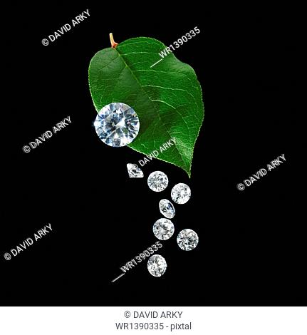 A green leaf with vein markings. A group of small clear glass beads, gem cut with reflective surfaces