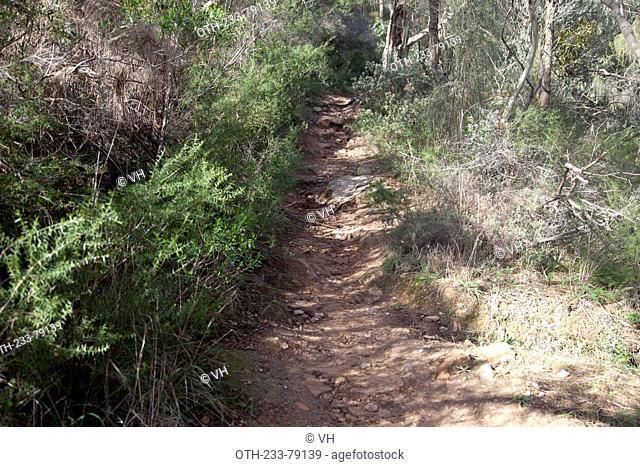 Mountain trek, Morialta Conservation Park, Adelaide, South Australia