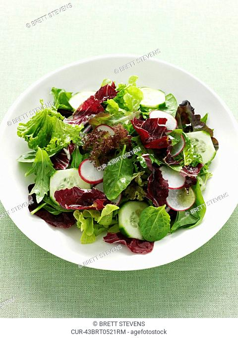 Plate of radish and cucumber salad