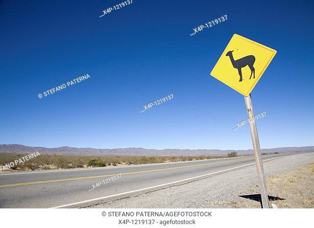 La Recta del Tin Tin, Parque Nacional Los Cardones, Salta Province. Argentina