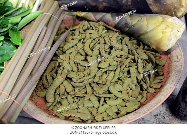 Gemuese auf dem Day Markt in der Hauptstadt Phuket Town auf der Insel Phuket im sueden von Thailand in Suedostasien