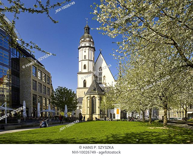 St. Thomas Church in Leipzig, Saxony, Germany