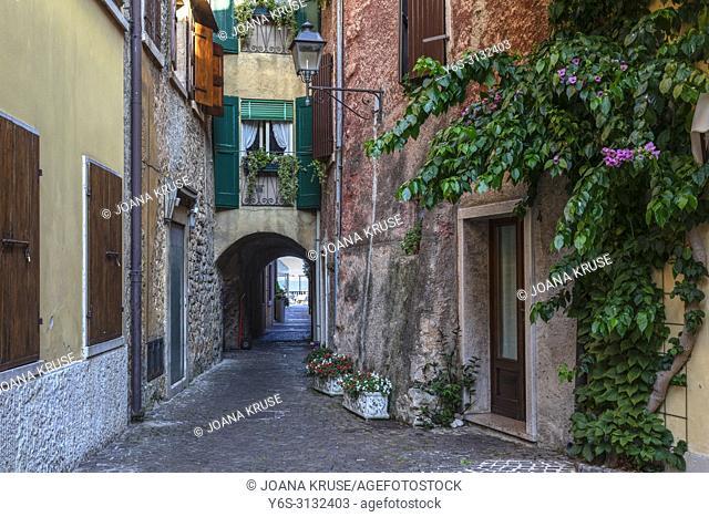 Torri del Benaco, Lake Garda, Lombardy, Italy, Europe