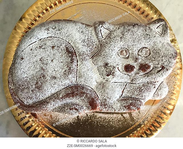 Cake in Form of Cat