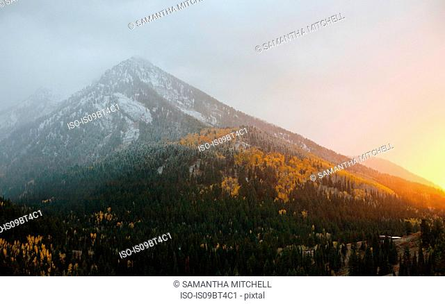Early snow in autumn in Big Cottonwood Canyon at sunset, Salt Lake City, Utah, USA