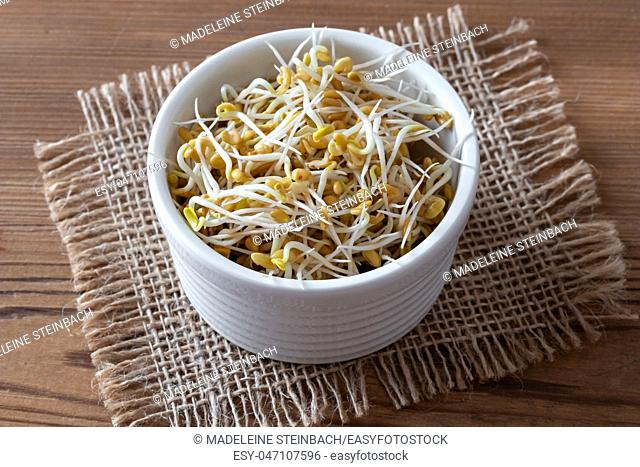 Sprouted fenugreek seeds in a bowl