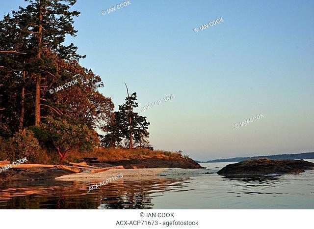 shell (midden) beach, Russell Island, Gulf Islands, British Columbia, Canada