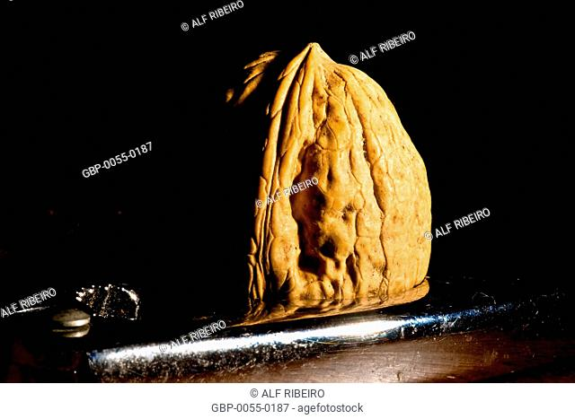 Nut; nutcracker; Sao Paulo; SP; Brazil