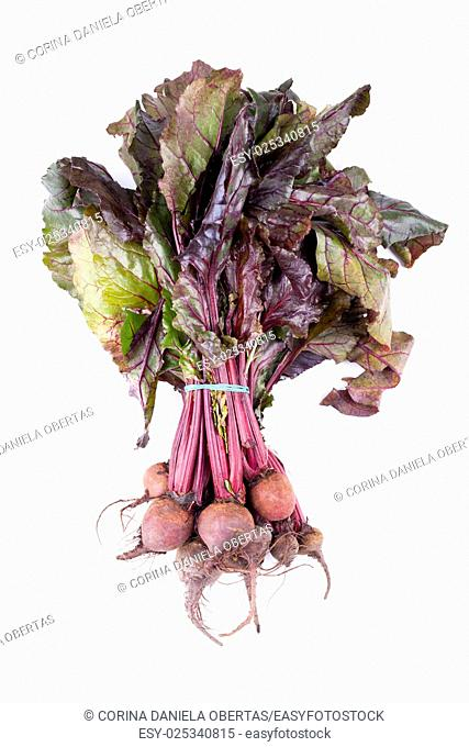 Raw beetroots, just picked from the garden, isolated on white background, overhead shot