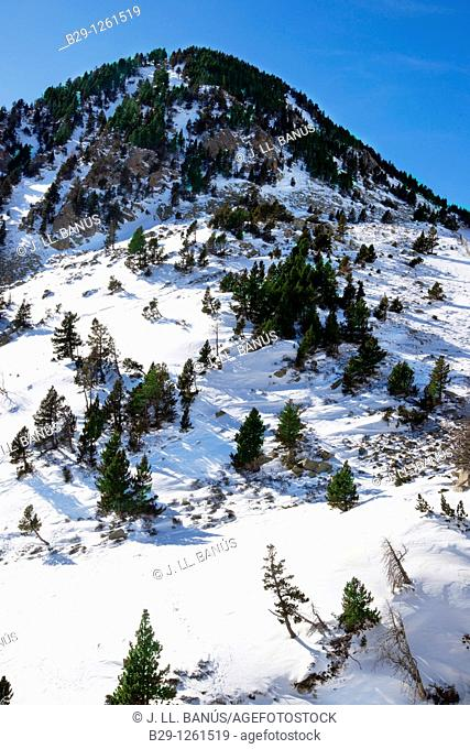 Snowy mountain. Girona Province. Catalonia. Spain