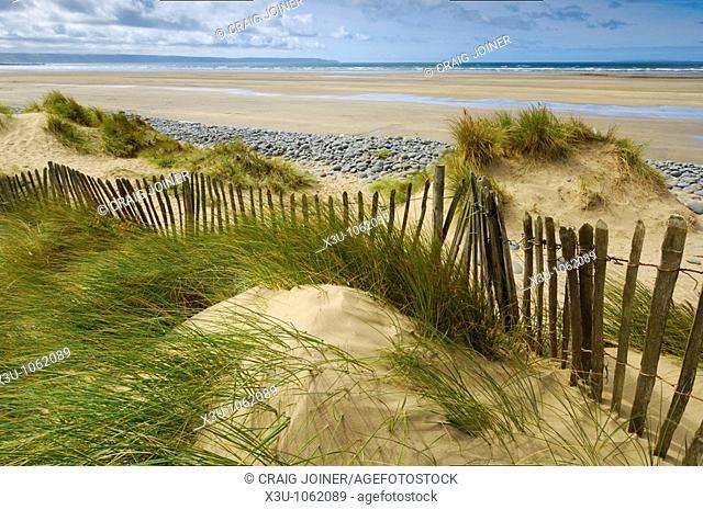 Sand dunes at Northam Burrows on the South West Coast Path near Westward Ho! in Devon, England