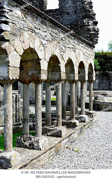 Remains of the cloister and lavabo, Mellifont Abbey, a Cistercian Abbey, County Louth, Republic of Ireland, Europe