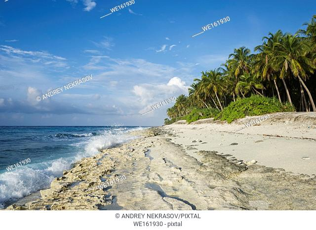 Deserted coral beach with coconut palm tree in sunny day. Fuvahmulah island, Indian Ocean, Maldives, Asia