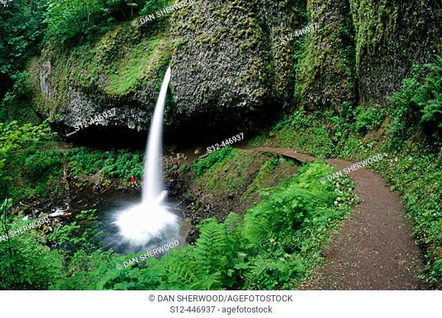 Upper Horsetail Falls. Columbia River Gorge. Oregon. USA