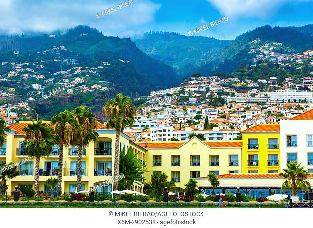 Funchal, Madeira, Portugal, Europe