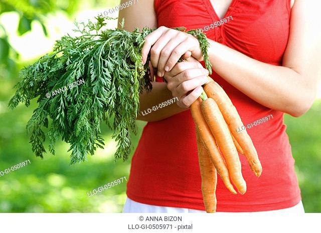 Carrots in hands, Debica, Poland
