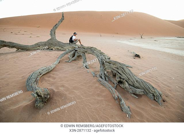 A tourist sits on top of a dead acacia tree trunk at the Namib-Naukluft National Park, located in Namibia, Africa