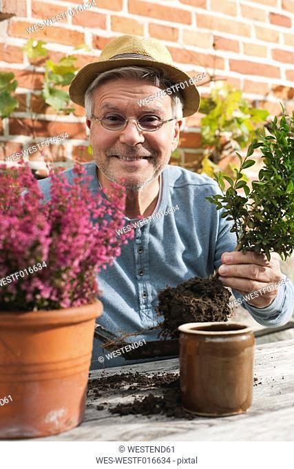 Germany, Kratzeburg, Senior man doing flower gardening