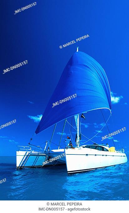 Virgin islands, catamaran