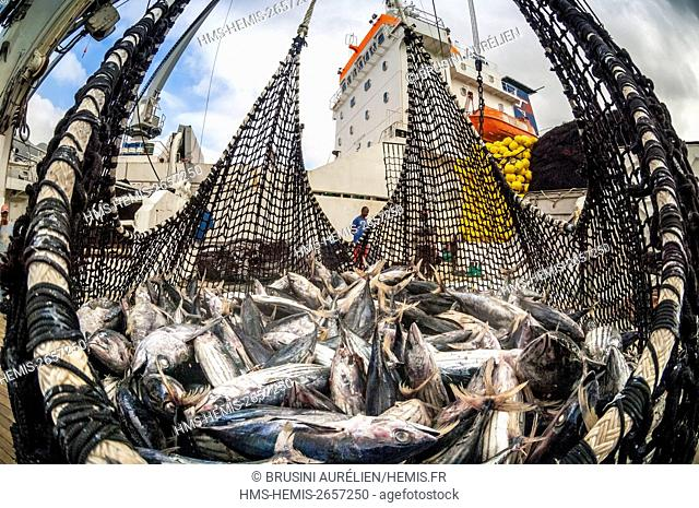 Seychelles, Indian Ocean, Mahe Island, Victoria, trap full of tuna loading cargo aboard a cargo freighter in the port of Victoria