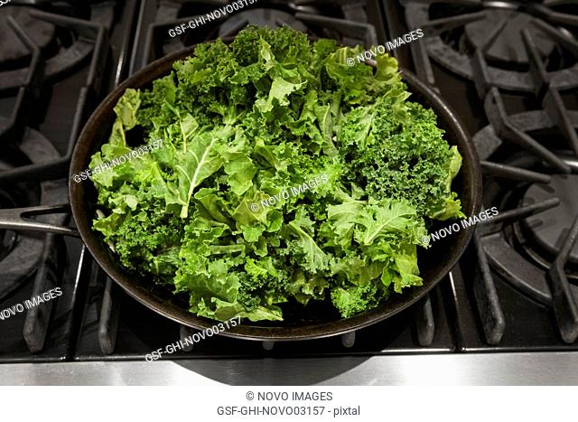Fresh Kale in Pan on Stove