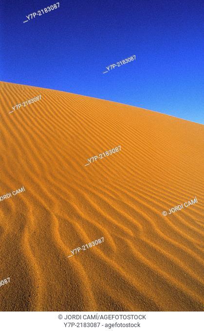 Sand dunes at sunrise. Merzouga, Sahara desert .Morocco. Africa