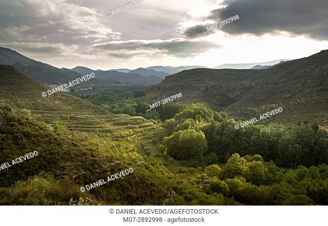 Spring landscape in Aguilar de río Alhama & Inestrillas, La Rioja wine region, Spain, Europe