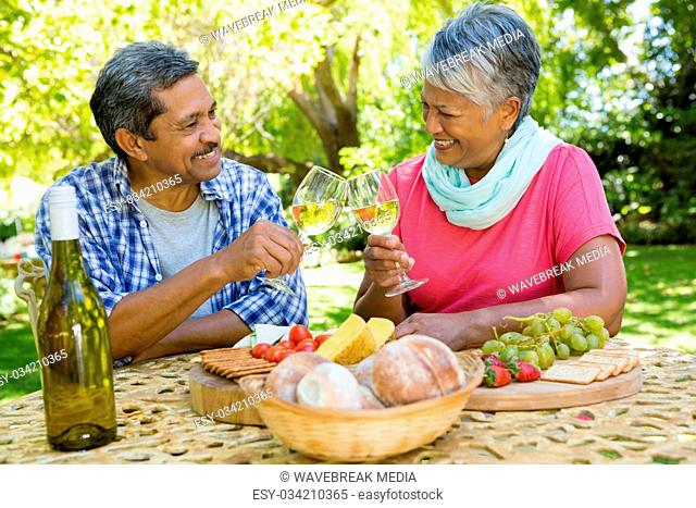 Senior couple toasting wine glasses