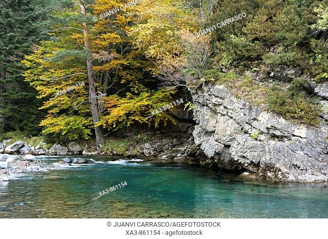 Ara river at autumn  Huesca province, Aragon, spanish pyrenees