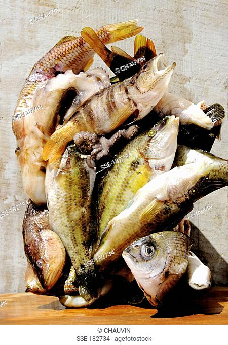 Raw fish composition