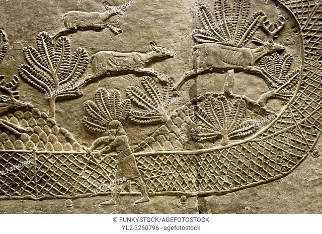 Assyrian relief sculpture panel of man stretching a net across the escape route of a herb of deer that are being hunted. From Nimrud, Iraq, 865-860 B